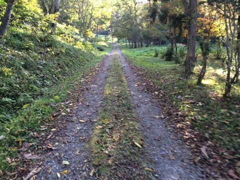 写真 2014-10-18 15 28 03