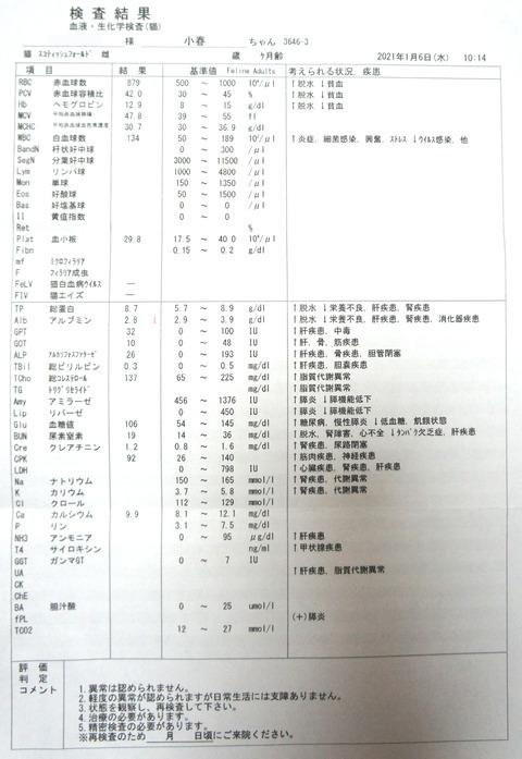 DSC07288