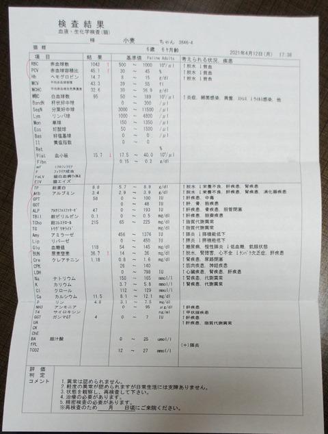 DSC08184