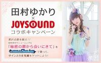 tamurayukari-joysound01