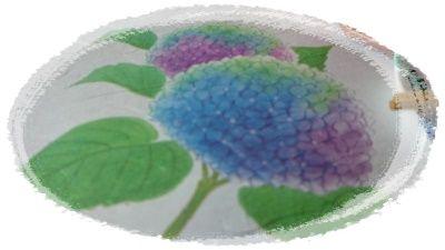 DSC_紫陽花枠付き