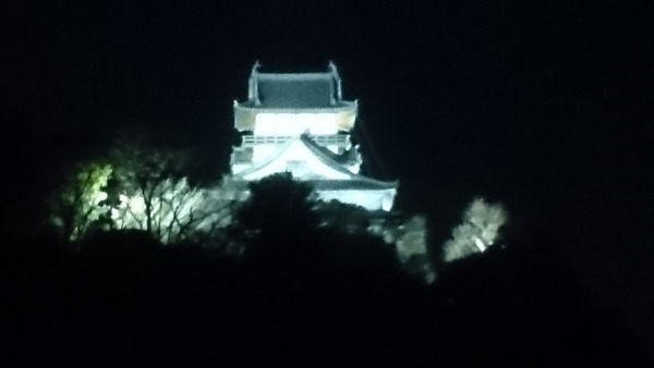 DSC_犬山城1
