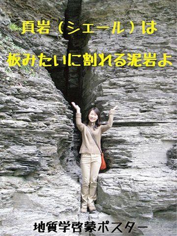 頁岩(けつがん)