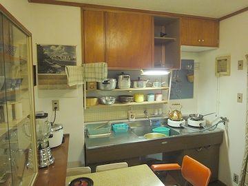 中央にシンクがあるキッチンは、これが最初