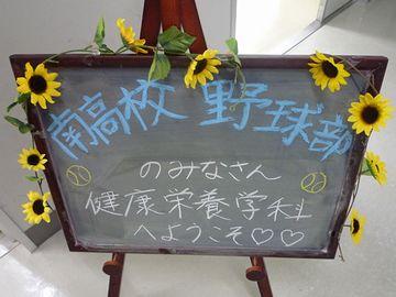 新潟市の新潟南高校が、甲子園でベスト8まで行った年があるんだよ
