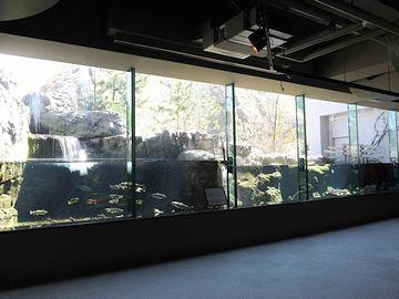 男鹿水族館・秋田の森と川