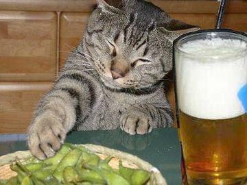 ゆっくり酒も飲めんではないか