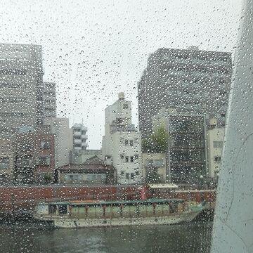 川岸の船は、屋形船