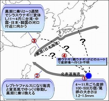 行きは、フィリピン、台湾、沖縄などを観光してから日本に来るようです