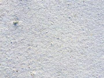 実際の極楽浜の砂です
