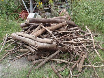 木の尻とは、木切れのこと