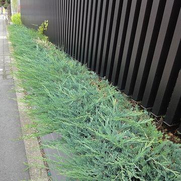洒落た植栽