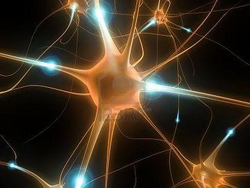 詰まってるのは、脳細胞です