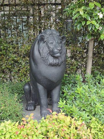 ライオンがいました