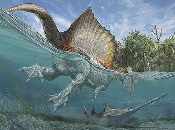 スピノサウルスが水中生活をしていた