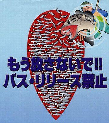 2003年からは、八郎潟でもリリース禁止になってますね