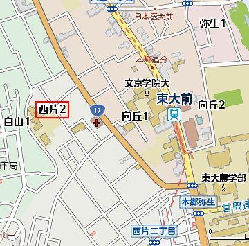 東京大学の真ん前あたりです