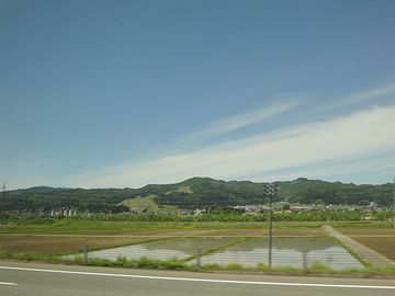 ここらは、魚沼産コシヒカリの産地です