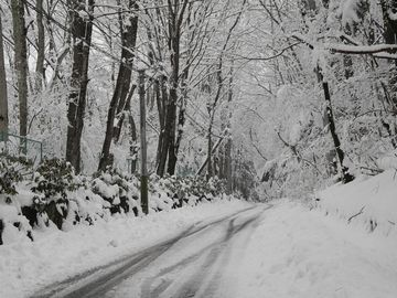 厳冬の時期です