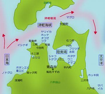 対馬海流は、津軽海峡を通るわけでしょ