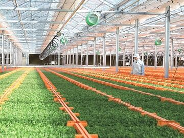 種苗を生産する工場がある