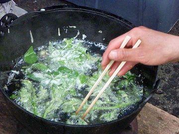 葉っぱは、天ぷらにすると美味しいわよ