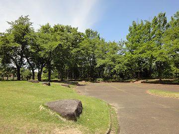 サービスエリア内は、樹木が鬱蒼と茂り、森のようでした