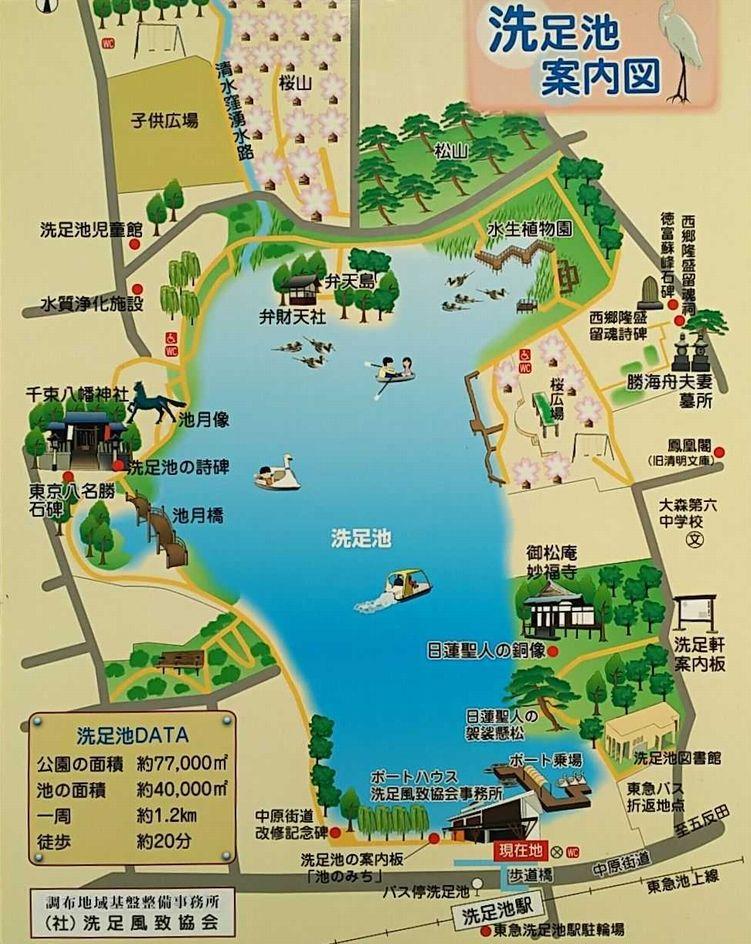 洗足池公園案内図