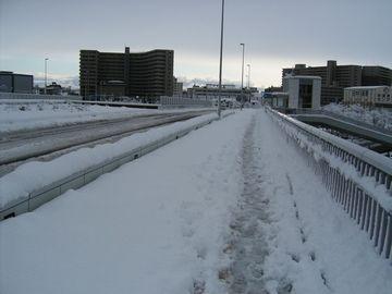 柳都大橋の歩道