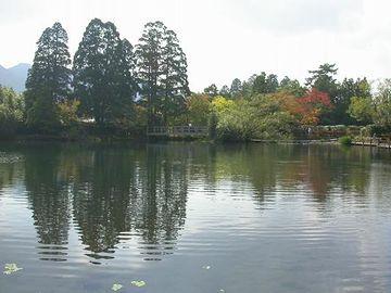 金鱗湖が見えて来ました