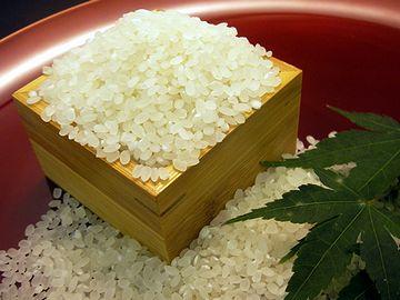 魚沼の米は、人が飲める水で作られとるんじゃ