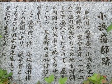 小浜藩酒井家の下屋敷