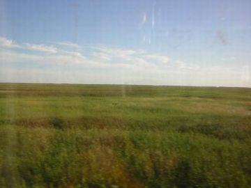 シベリア鉄道の車窓。1日中、同じ景色の日もあるそうです。