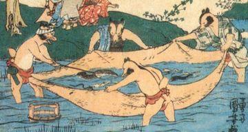 きんたまを広げて漁をするタヌキ