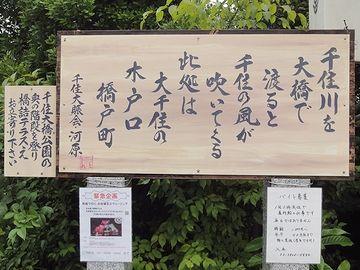 千住大賑会(おおにぎわいかい)・河原