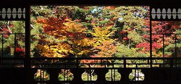 秋の紅葉のときなんか、絵画を立てたようだって