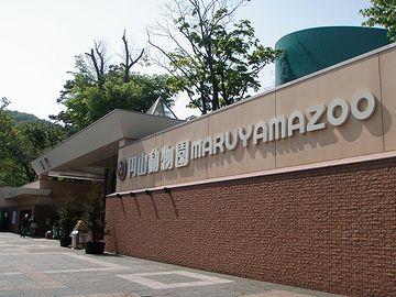 札幌の円山動物園
