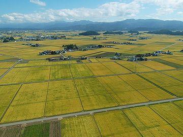2004年、合併して美郷町となる直前の仙南村