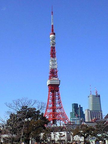 東京は、冬が一番お天気がいい季節なんだから