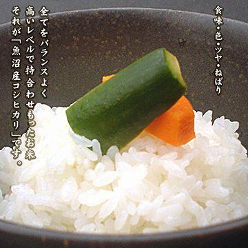 新潟県産のお米を食べたかった