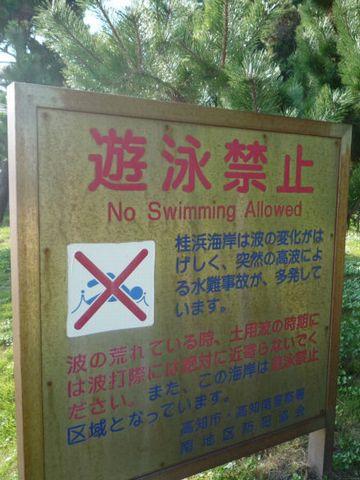 桂浜 遊泳禁止