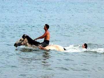 頼朝を載せたまま、川に飛び込んだんです