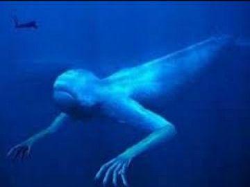 深海生物発見
