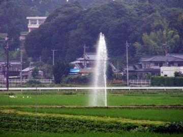 いきなり田んぼから、温泉が湧いたそうです