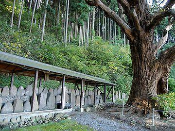 この杉のかたわらに、板碑(いたび)が並べてあって……