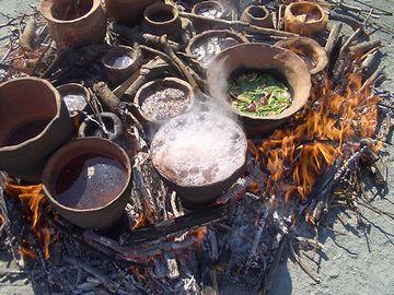 イネ科植物が煮炊きされた