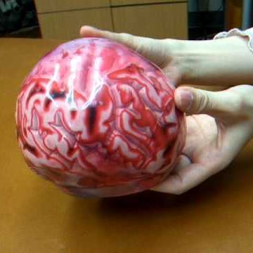 こっちの脳みそは、新品同然なんです