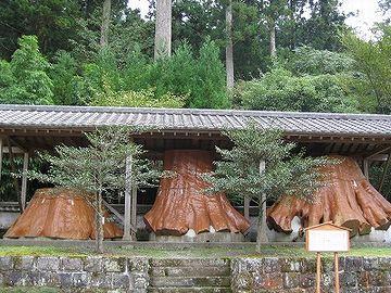 宇奈岐日女神社・切り株