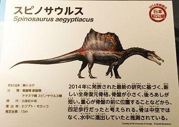 スピノサウルスは四足歩行をしていた