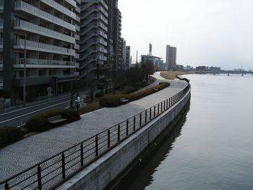 雪が解けた信濃川河畔